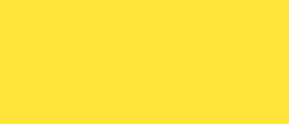 fundo-Jacu-bird